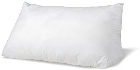 eLuxurySupply Reading Wedge Bed Pillows| Two Fill Options to Choose From