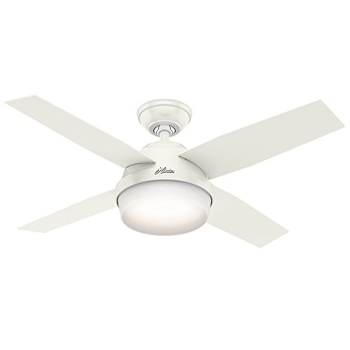 Hunter Fan Company - Indoor Dempsey Ceiling Fan with Light